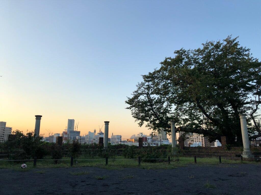 夕暮れ時の元町百段公園をiPhoneXで撮影