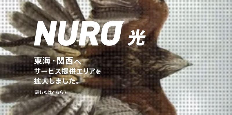 NURO光の公式サイトアイキャッチ画像