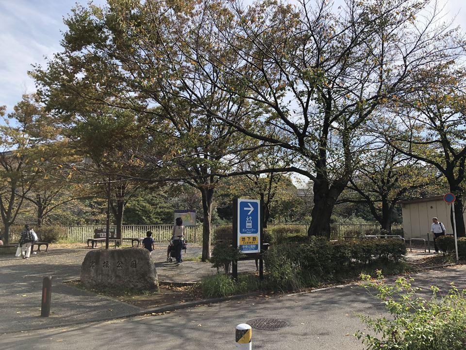 市営地下鉄ブルーライン線岸根公園駅から岸根公園に行くルート