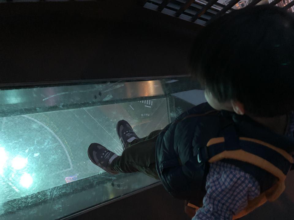 横浜マリンタワーの29Fにある、ガラス張りの床
