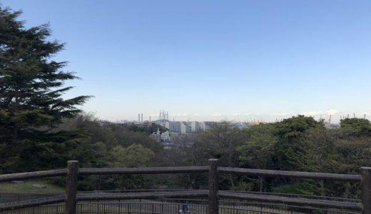 本牧山頂公園は、桜の花見やドッグランにキャンプ、BBQなんでもござれ。東京湾の眺望もオススメ