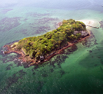 「宴島(うたげじま)2019 真夏のモンキー・D・ルフィ島」が開催される猿島の写真