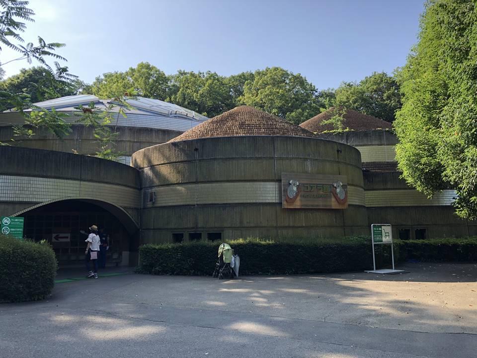 多摩動物公園のオーストラリア園にあるコアラ館
