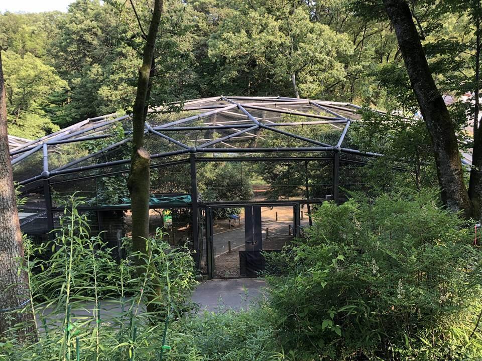 多摩動物公園のウォークインバードケージ