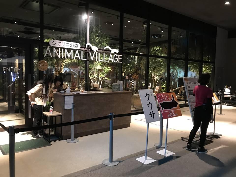 オービィ横浜のアニマルヴィレッジ写真