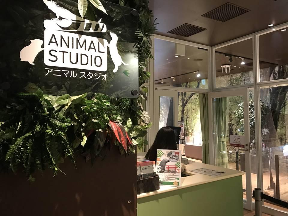 オービィ横浜のアニマルスタジオ写真