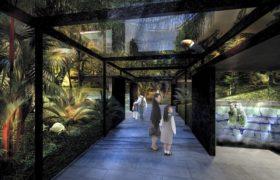 川崎ルフロンにできる「mizoo(ミズー)川崎水族館」のアマゾンゾーンイメージ