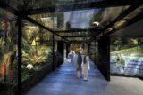 2020年7月17日「カワスイ 川崎水族館」がルフロン川崎にオープン!レストランやカフェも併設